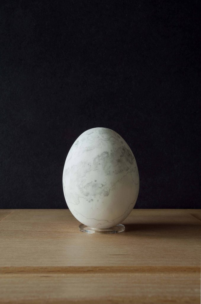 Moon Egg by Penny McCarthy